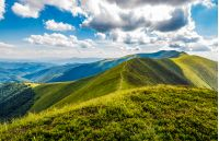 lovely green grassy hills of mountain ridge. gorgeous mountainous landscape in Carpathians on cloudy summer day