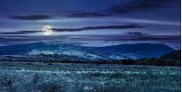summer rural landscape. meadow near the village on mountain hillside at night in full moon light