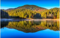 View on crystal clear lake with mist and reflection on the water. Spruce forest on foggy autumn morning. Majestic mountain landscape at sunrise.