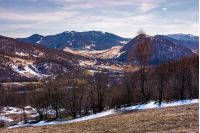 mountainous scenery of Uzhansky National Park. leafless forest on hills with weathered grass and some snow in springtime