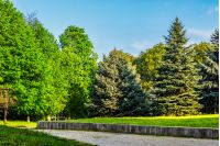 area of ​​the old city park with lantern near cobble path under the conifer and chestnut trees