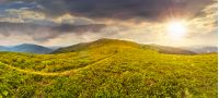 panoramic landscape with narrow meadow path in grass on top of mountain range in evening light