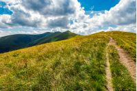 path through a grassy meadow on a hillside. destination - mountain peak. beautiful summer landscape in good weather with few clouds on a blue sky.