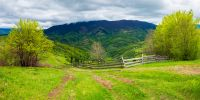 path through agricultural area in mountains. wooden fence along the road down the hill. trees on hills in fresh green foliage. beautiful panoramic landscape in spring
