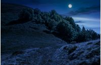 path through mountain meadow. dark forest on side of the hill. summer landscape at night in full moon light