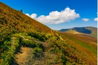 summer mountain landscape. path through the ridge to the top peak. big fluffy clouds in a blue sky