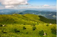 picturesque landscape with grassy mountain meadow. beautiful Carpathian scenery