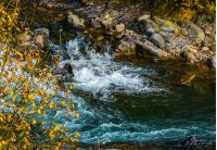 powerful mountain brook with rocky shore. lovely autumnal nature background