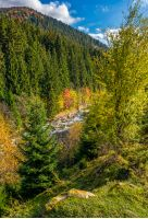 powerful mountain brook with rocky shore in valley. lovely autumnal nature background