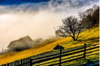 rural area on hillside in autumn season. agricultural field and houses in fog behind the fence. beautiful and vivid countryside scenery.