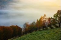 rural area in mountains at foggy sunrise. wonderful autumn scenery. wooden fence along the grassy hill side meadow