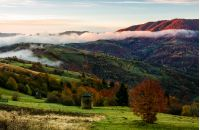 rural area on foggy autumn morning. gorgeous landscape with haystacks on green meadows and colorful trees