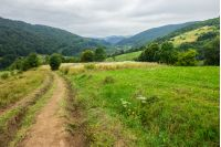 path through meadow  on hillside in mountainous rural area
