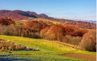 rural fields on hills in autumn. beautiful mountainous scenery with red foliage on trees