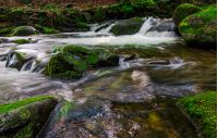small cascades on the forest stream among huge boulders covered with moss. dreamy Carpathian landscape