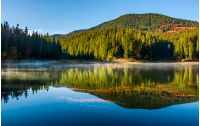 smokey lake reflect forest mountain and blue sky. orange foliage float on water surface among fog and ripples complementing gorgeous landscape composition