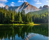 composite summer landscape with spruce trees among tall grass on the shore of a clear lake at the foot of epic high Tatra mountain ridge with rocky peaks under blue sky with clouds