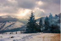 stormy winter sky over spruce forest in fog by the road at the mountain hill
