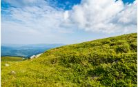 summer mountain landscape. green meadow on the top of hillside in Carpathians