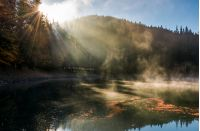 sun light in fog over the mountain lake Synevyr. high altitude lake among spruce forest on beautiful autumn morning. sunning nature scenery