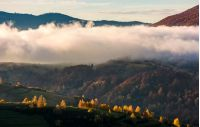 thick fog over the hill in autumn mountains. gorgeous nature scenery at sunrise
