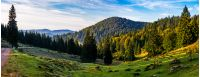 valley with forest in mountains of Romania. beautiful autumn sunrise