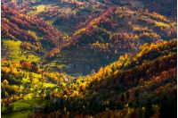 village in a valley down the hill among forest. beautiful autumn scenery in mountains.