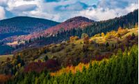village on a hillside with forest in autumn. gorgeous and colorful mountainous scenery with great weather