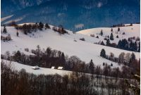 village on snowy hill in winter. lovely countryside scenery in mountainous region at sunrise