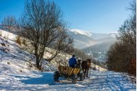 man riding cart with twoo horses down the hill to village in snowy mountains