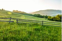 wooden fence on agricultural grassy meadow with trees on hillside in Carpathian mountains at sunrise