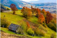 woodshed on grassy hillside with reddish trees. gorgeous autumn scenery in mountainous rural area