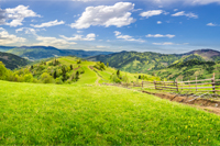 summer rural landscape. fence near the meadow and trees on the hillside. forest in fog on the mountain top