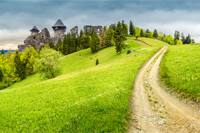 composite mountain landscape. curve path to abandoned ruins of ancient fortress through green meadow on mountain hillside with forest