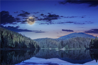 view on lake near the pine forest at night on mountain background
