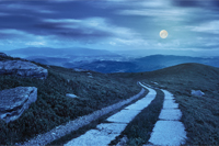composite panorama Landscape with road on a hillside with huge stones and conifer trees  near mountain peak at night in full moon light