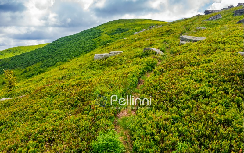 summer mountain landscape. footpath uphill through the ridge to the peak. huge boulders on grassy slope. beautiful Carpathian nature scene