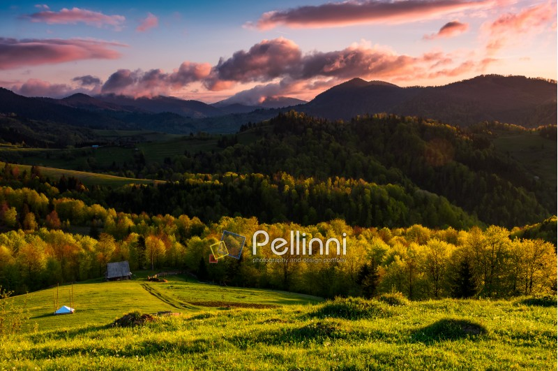 gorgeous sunset in mountainous rural area. beautiful landscape with forested hills and pink cloudy sky in springtime
