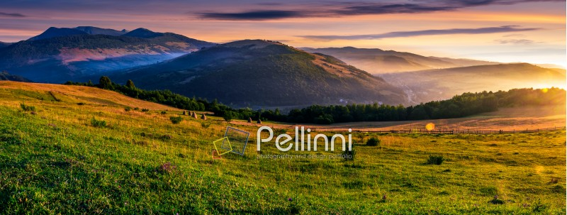 panorama of grassy rural fields in foggy mountains at sunrise. beautiful Carpathian countryside landscape