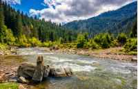 River with rocky shore flows among  green forest at the foot of the mountain. Picturesque nature of rural area in Carpathians. Serene springtime day under blue sky with some clouds