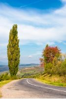 asphalt country road through hills with trees. lovely autumn weather in mountains