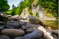 boulders on the shore of the river. lovely nature scenery in forest