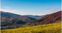 grassy hillside in mountainous rural area. beautiful mountainous countryside in autumn