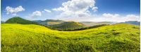 panoramic summer landscape. Hillside meadow in high mountains in morning light