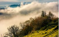 huge fog rise above the hillside, lovely autumnal scenery in mountains at sunrise