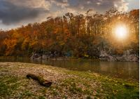 log on a rocky shore of forest river with yellowed and reddish trees on rocky cliff in autumn mountains. gorgeous nature autumnal landscape