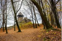 medieval fortress in autumn leafless forest. Nevytsky castle is popular tourist destination of TransCarpathia, Ukraine