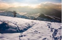 snowy slope in mountainous countryside. gorgeous weather with clouds over the mountain ridge.